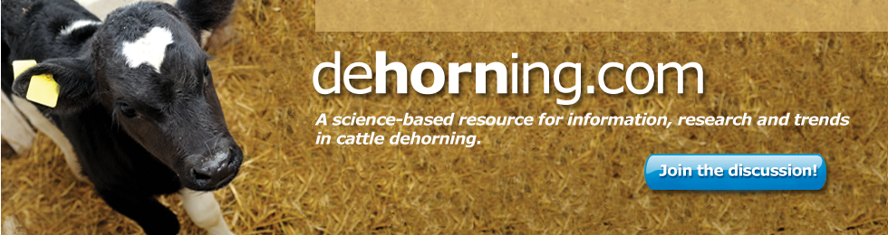 dehorning.com A science-based resource for information, research and trends in cattle dehorning.